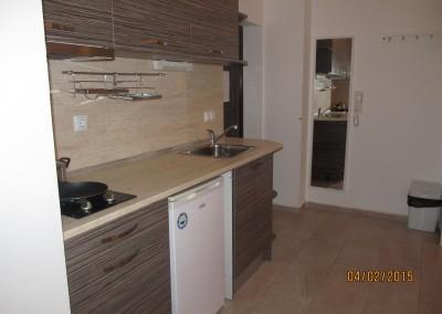Апартамент лукс за четирима (5)